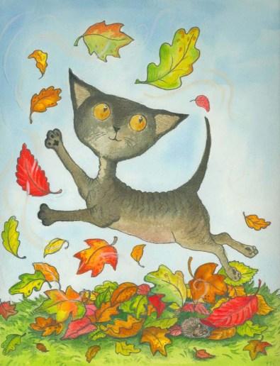 Branwyn: a curious cat